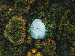 Safári Dourado - Ecoturismo e Aventura
