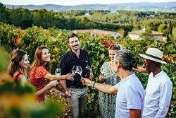 Azur Wine Tours