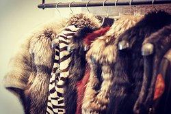 Fur design!