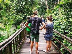 Resi Bali Tour
