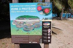 Kanumera Bay ; Panneau écologique