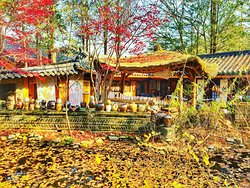 Nami Island, Chuncheon, in the fall.