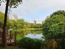 Nice park especially if you like birds