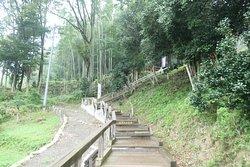 入口からはちょっとだけ石段を登らなければいけません。上野三碑の中では一番体力が必要です。