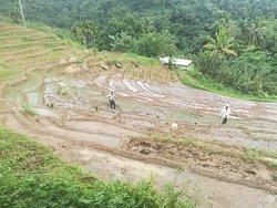 Traditional village tour
