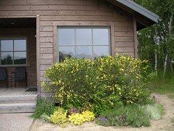Urgemütliches Cottage für 4 Personen. Eigene Grillstation zur freien Benützung neben dem Haus.