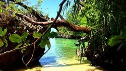 Поездка по островам в Краби