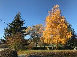 Gite Les 4 Saisons - Orbey
