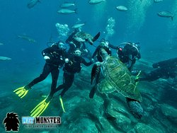 nurkowanie Teneryfa w El Bufadero z WET MONSTER - Polskie Centrum Nurkowe; dive on El Bufadero with WET MONSTER Dive Center Tenerife