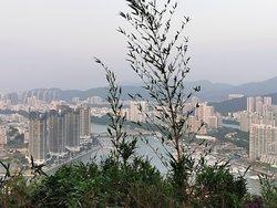 Интересное место, с непередаваемым запахом цветов, головокружительными панорамами на бухту Санья бей и потрясающими закатами. #sanya #оленьповернулголову #china