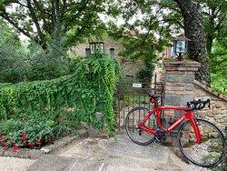Veloce carbon road bike rental delivered at accommodation in Umbria