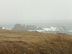 冬の海の険しさを満喫
