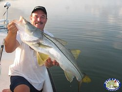 Giant Snook