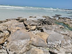 Rock pools, Pink lipped shell, ghost town,