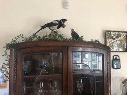 Christmas at Castle Cottage Tearoom