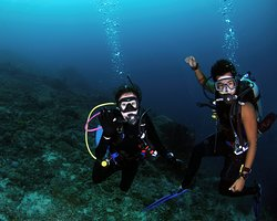 Octopus Dive Nusa Penida