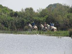 Promenade à cheval à Sylvéréal