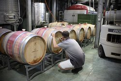 See us at work, enjoy a full winery experience when you come to taste and dine
