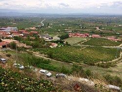 Sweeping views of the vineyards