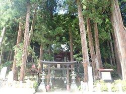 神社の正面前に推定400年とされる見事な杉の御神木があります。その他にも見事な杉の大木群が入口の鳥居の背後両側にそびえ立ち素晴らしい眺めでした。