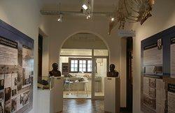 sala histórica y laboratorio científico museo de ciencias naturales de miramar punta hermengo