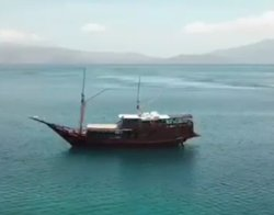 Hi guest.... Now i have trip to Labuhan bajo.Please contact me here. for detail to.Please see at website. I am waiting you Thank you...