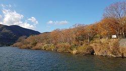 冬陽下的蘆之湖