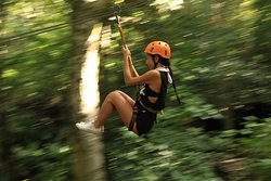 Zip lining in the jungle
