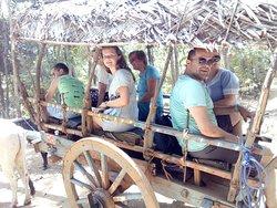 Travel with Wijaya