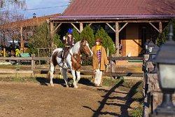 Катания на лошадях детей и взрослых.