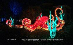 Pieuvre de l'exposition «Océan en Voie d'Illumination» au Jardin des Plantes de Paris (5ème)