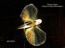 Poisson Volant à l'exposition «Océan en Voie d'Illumination» au Jardin des Plantes de Paris (5ème)