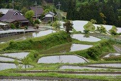 Beautiful rice terraces at Hata, Takashima