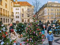 Lovely  Bratislava in winter