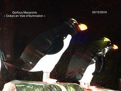 Gorfous Macaronis de l'exposition «Océan en Voie d'Illumination» du Jardin des Plantes de Paris (5ème)