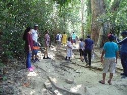 1.4 km trek towards lime stone caves