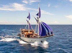 Pirates' Bay Cruising