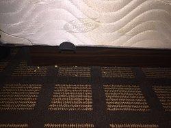 Unvacuumed carpet in hotel room
