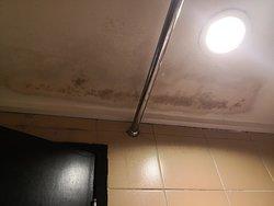 Bathroom ceiling full of moss