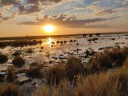 Amboseli at sunset