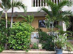 Hoor hetbruisen van de palmen
