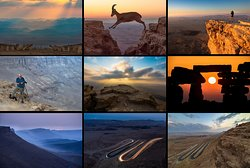 Makhtesh Ramon ---  Epic landscapes on the rim of the Ramon crater, at the colorful rocks and geological formations inside it, with a possible visit to nearby Ein Avdat canyon and desert Oasis. (All photos © Ilan Shacham)