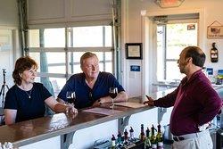 Vineyard and winery