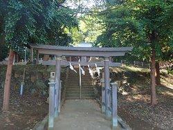 周辺は住宅地ですが、神社は木々に覆われた中にあり、社殿に向かう石段の参道は素敵でした。