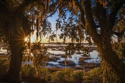 Beaufort Photography Tours