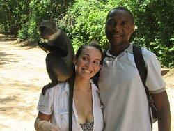 Rovine di Gede e villaggio delle scimmie