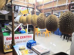 Durian Central @ Macalister Road Storefront 2 Black Thorn & Musang King Specialist