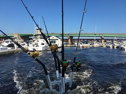 We use Penn Internationals and Penn SS Spin fishing tackle.