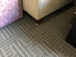 Dirty Living Room Carpet
