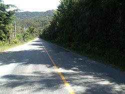 Cordillera Bikes